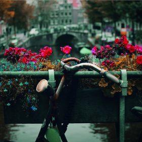 Travel tips: les meilleures adresses d'Amsterdam