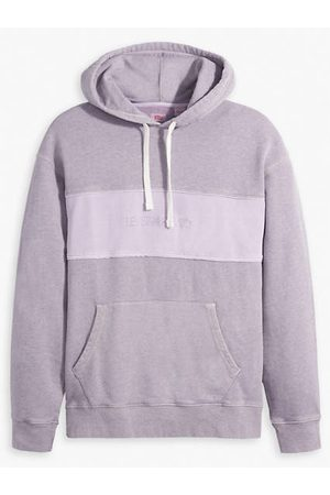 Levi's Relaxed Fit Novelty Hoodie / Dye Sassafras