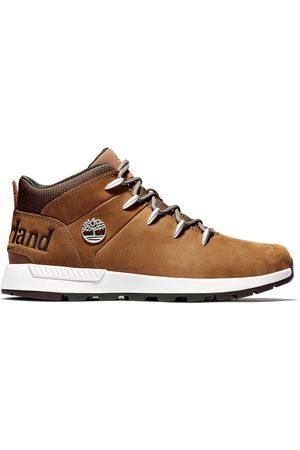 Timberland Homme Chaussures de randonnée - Bottine De Randonnée Sprint Trekker Pour Homme En