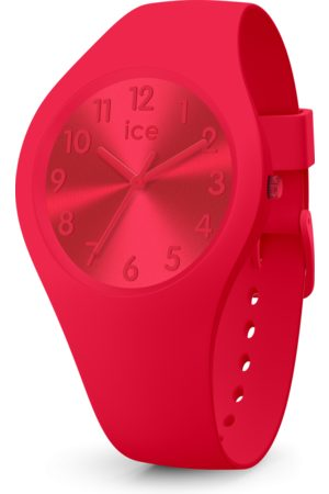 Ice-Watch Montre Colour 017916 - Small