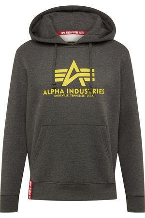 Alpha Industries Sweat-shirt 'Basic Hoody