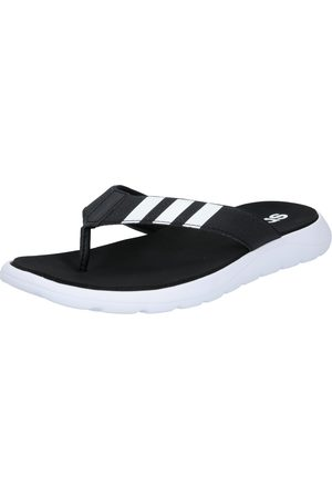 adidas Homme Tongs - Claquettes / Tongs 'Comfort