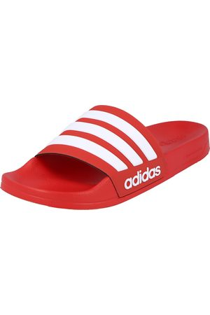 adidas Homme Tongs - Claquettes / Tongs 'ADILETTE