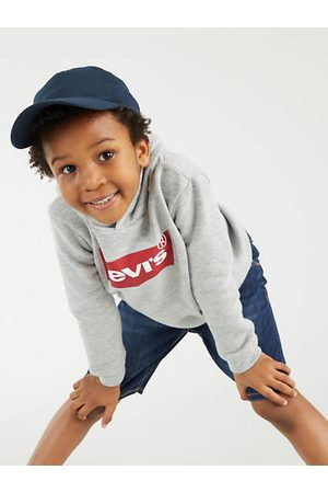 Levi's Kids Batwing Screenprint Hoodie Gris / Grey Heather