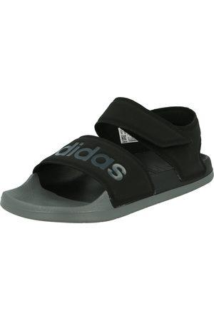 adidas Sandales 'ADILETTE