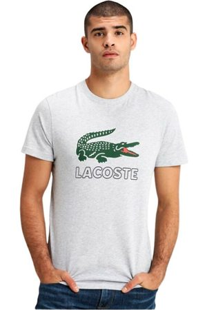 Lacoste Camiseta , Homme, Taille: 3XL