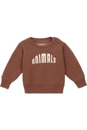 The Animals Observatory Bébé — Pull en coton imprimé
